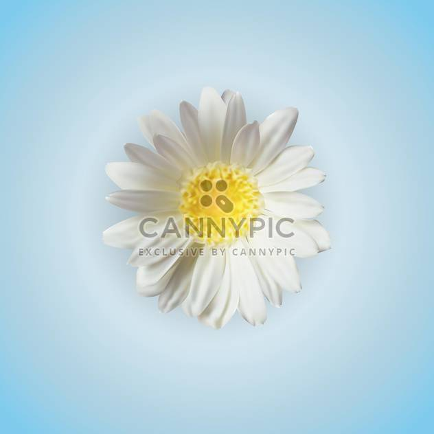 White chamomile flower, vector icon - Free vector #128250