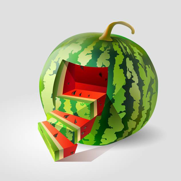 Vector illustration of colorful watermelon on grey background - vector gratuit #127340