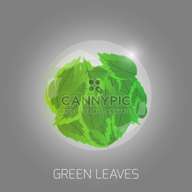 Vector illustration of green leaves - Free vector #128690