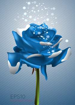 beautiful blue rose vector illustration - vector gratuit #128960