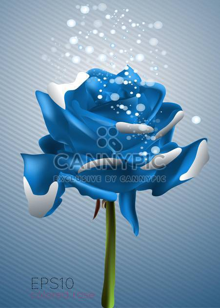 beautiful blue rose vector illustration - Free vector #128960