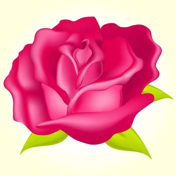 Vector illustration of beautiful pink rose on yellow background - Free vector #129620