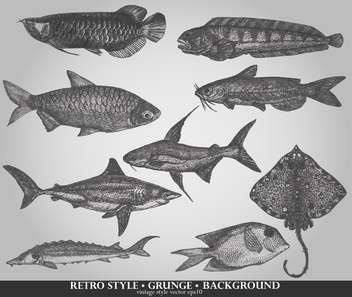 set of sea fish in retro style vector illustration - Free vector #135210